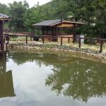 konnabazalina-ezero